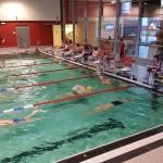 24-h-schwimmen